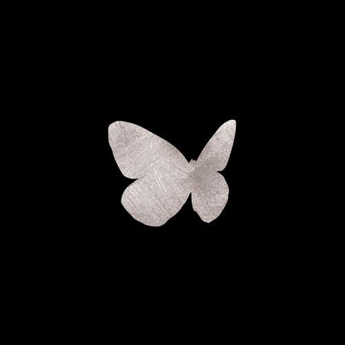 Goldsin Tattoos - Menelaus Butterfly Argint